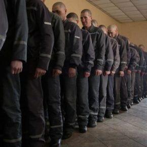 Елена Семенова: пытки и использование бесплатного рабского труда заключенных практикуются почти во всех колониях